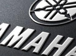 MEGALF Logo Photo - 1