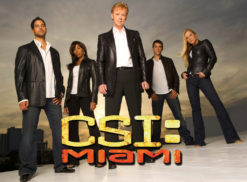 MIAMI VISE Logo Photo - 1