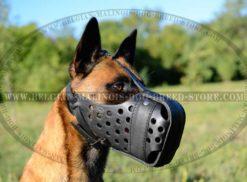 Malinois Belgium Dog Logo Photo - 1