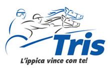 TOTOGOL Logo Photo - 1