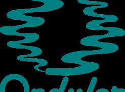 Wave Logo Photo - 1