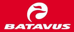 Batavus Logo | Logos Rates