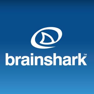 Brainshark Logo photo - 1