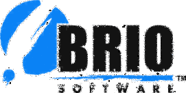Brio Software Logo photo - 1