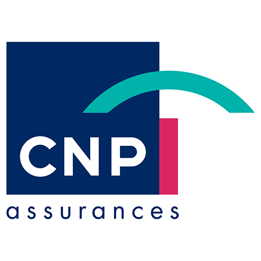 CNP Solutions Logo photo - 1