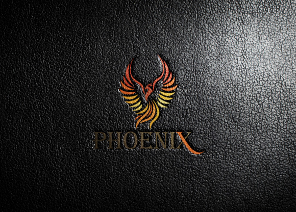 Colorful Bird Logo Template photo - 1