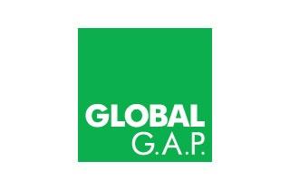 Global Operations Logo photo - 1