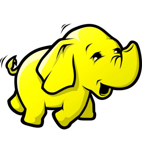 Hadoop Logo photo - 1