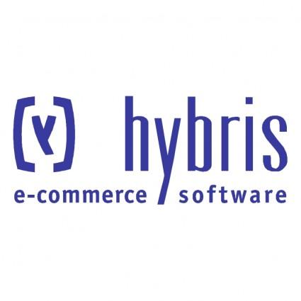 Hybris Logo photo - 1