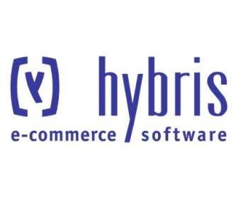 Hybris Productions Logo photo - 1