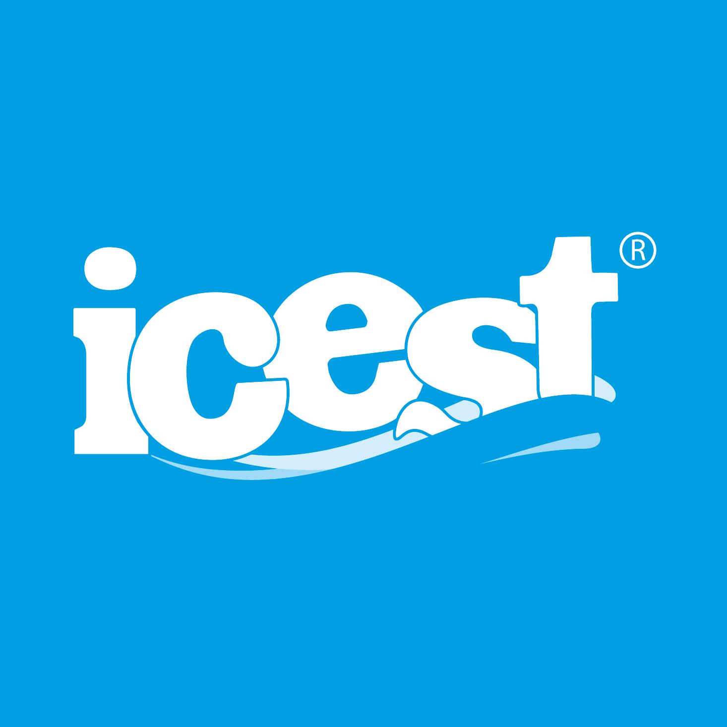 Icest Logo photo - 1