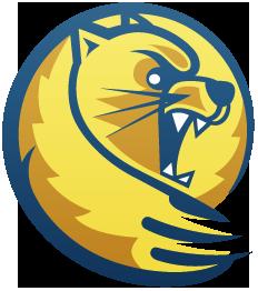 Lander Logo photo - 1