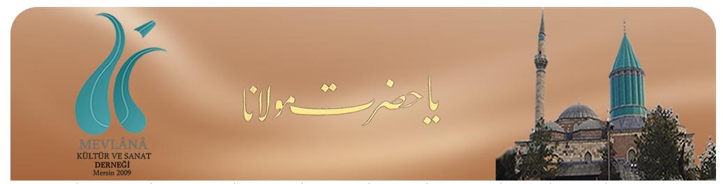 Mevlana Üniversitesi Logo photo - 1
