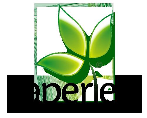 Paperless Logo photo - 1