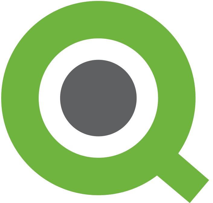 Qlik View Logo photo - 1