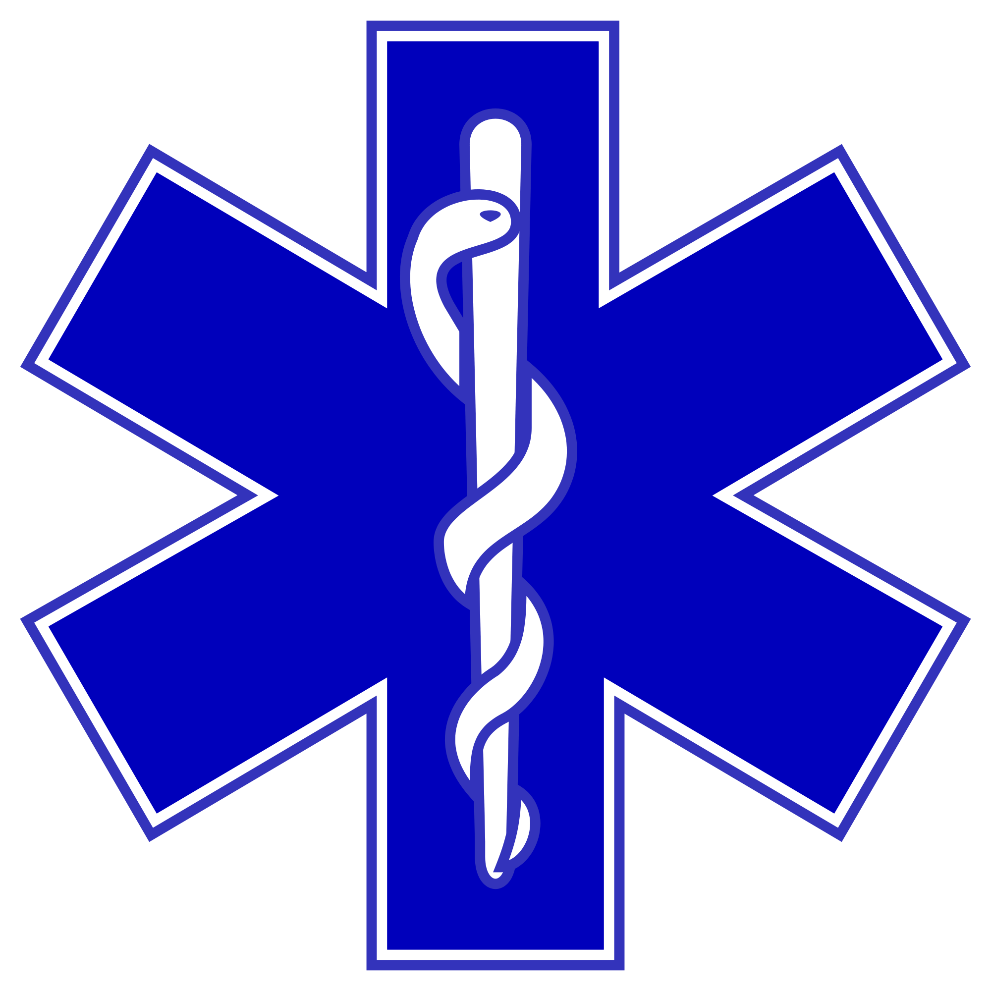 Star Of Life Blue Logo photo - 1