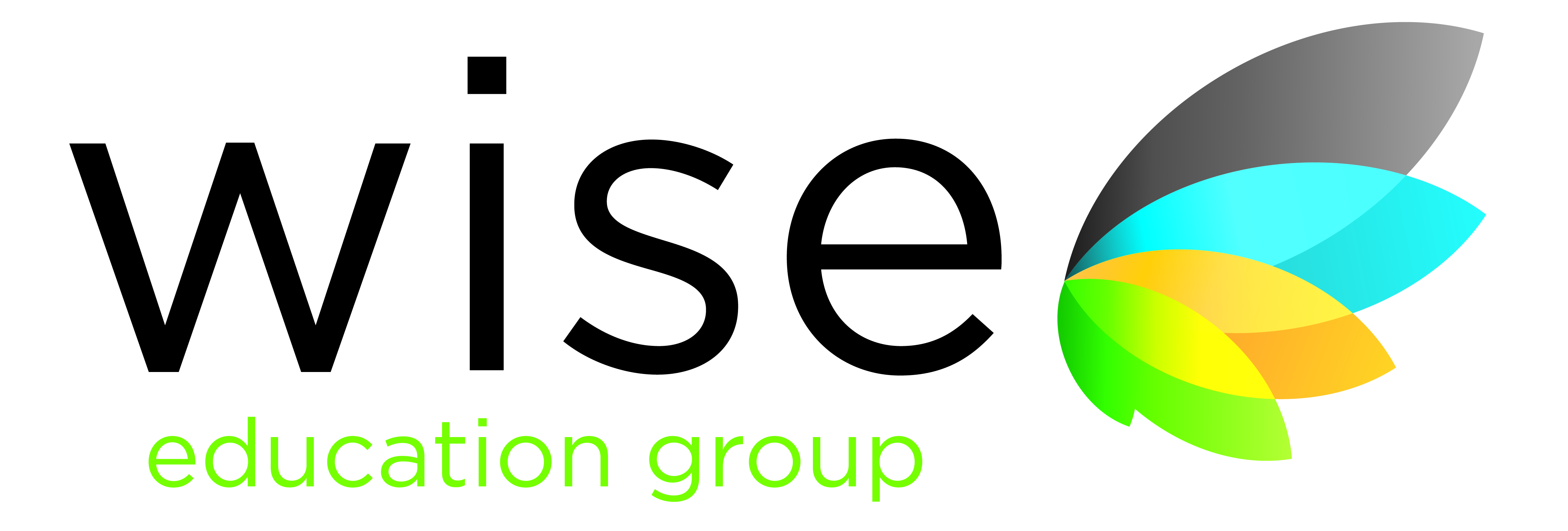 Wise Group Logo photo - 1